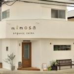 店舗改装/ mimosa